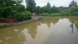Whalebone Flooding Photo by Christina Booth